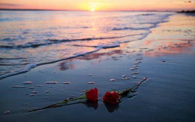 flores para funeral, centros de flores para difuntos, centros funerarios flores urgentes, flores funeral, flores para difuntos, centros de flores fúnebres, flores para cementerio